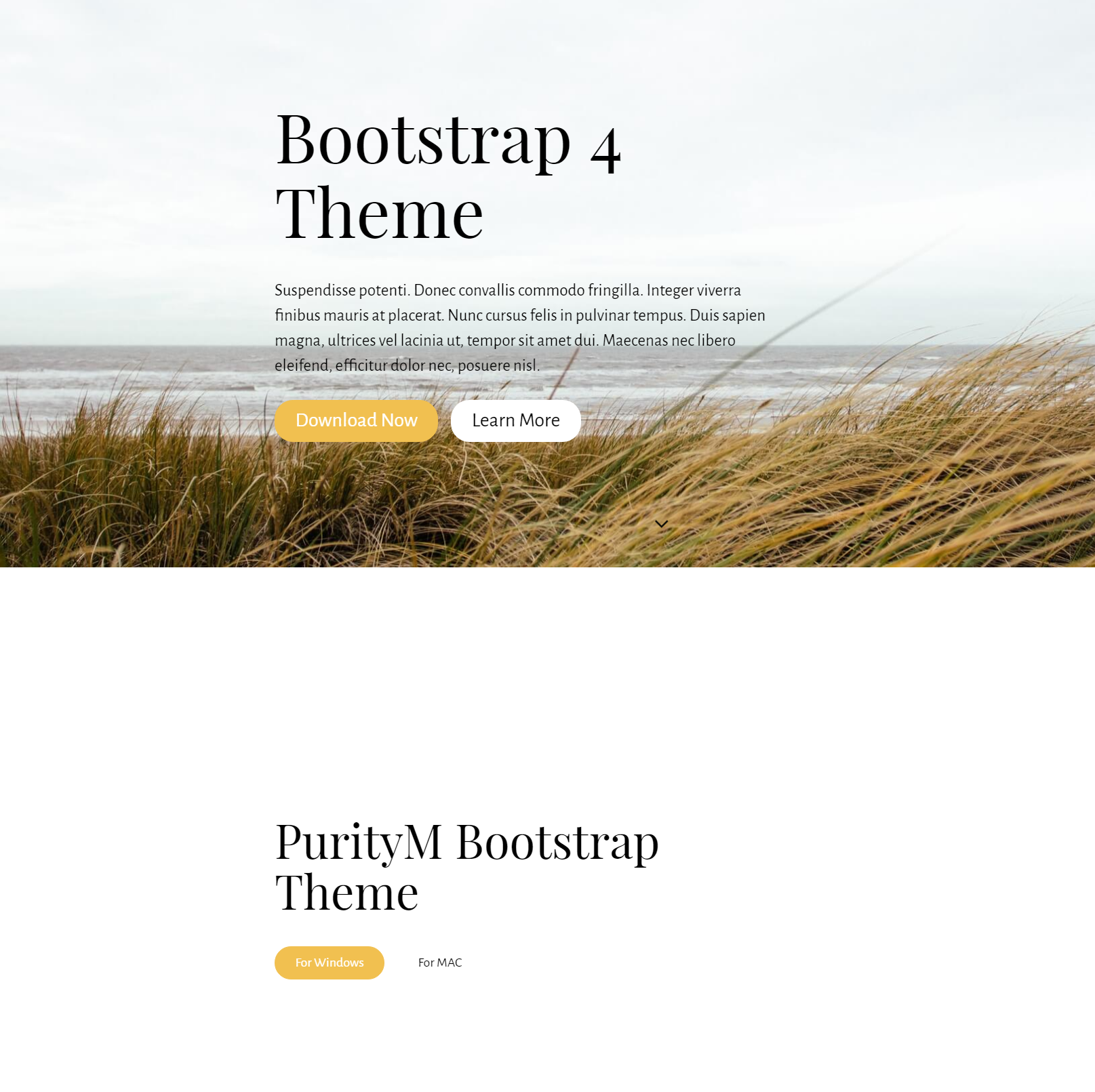 HTML Bootstrap 4 Themes