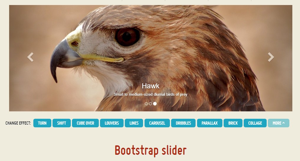 Bootstrap Product Slider