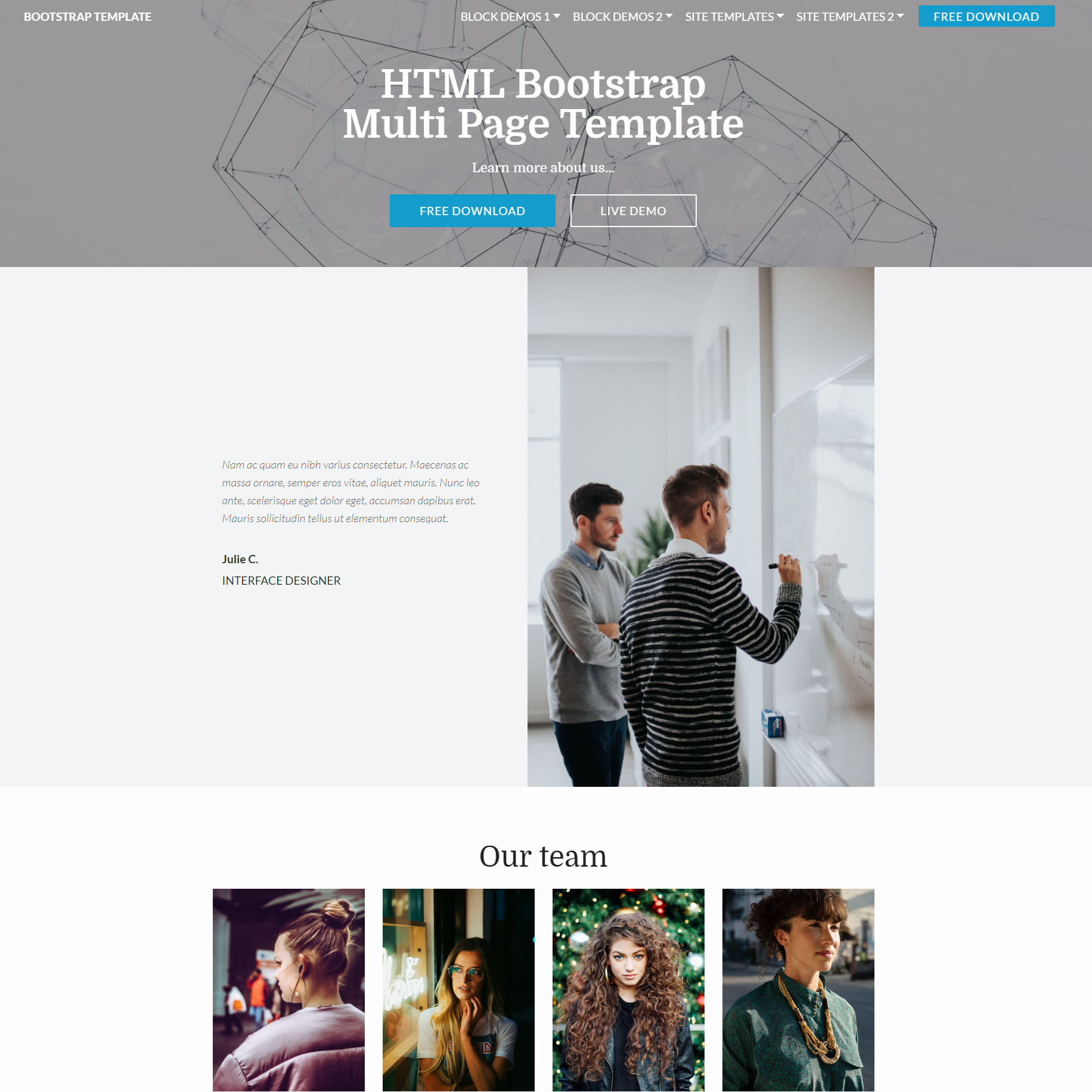Free Download Bootstrap Multi page Themes